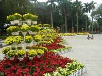 Tet flower displays at Lenin Square