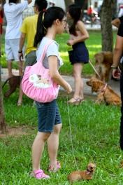 Στο Ανόι με τους σκύλους τους...