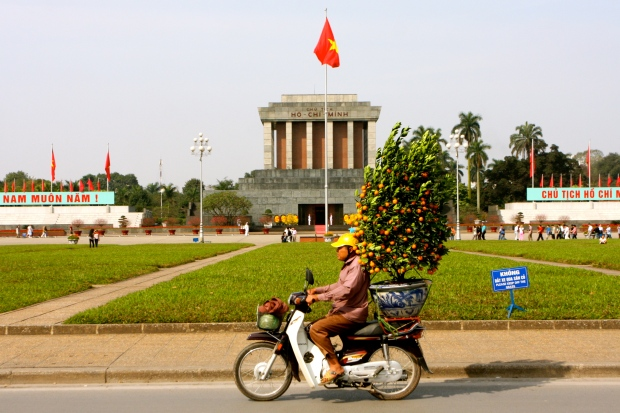 A kumquat tree comes whizzing in past Ho Chi Minh's Mausoleum
