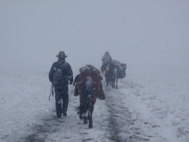 Leading our horses now - we decided to descend.