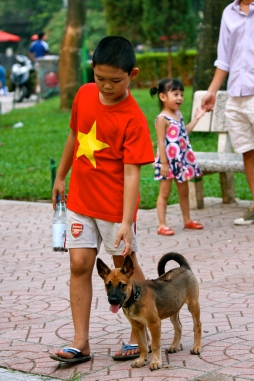 A boy playing with a Phu Quoc puppy
