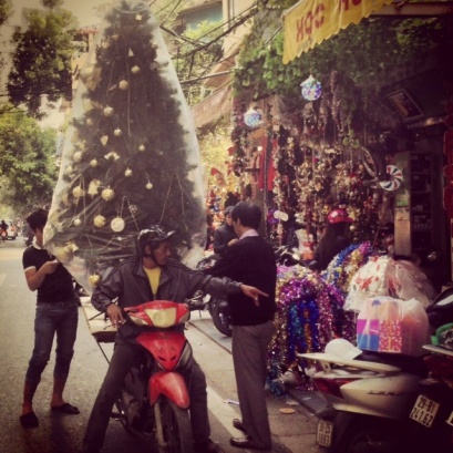 Transporting Christmas trees Vietnamese style...