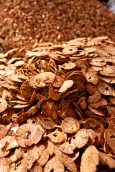 betel nut slices