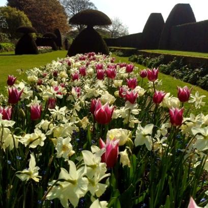 Hinton Ampner Gardens