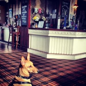 lancaster pub